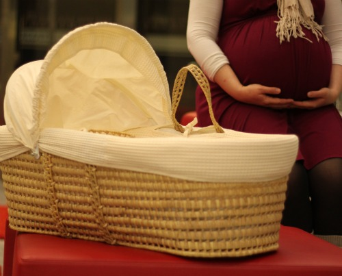 moses basket from suki